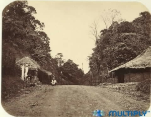 Puncak Pass 1880