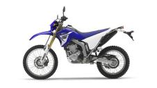 2014-Yamaha-WR250R-pictures_5